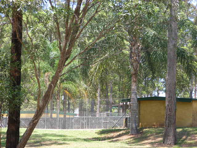 Amarena Boarding Kennel
